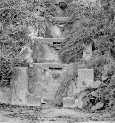 Cascade1950-LAK-217-detail-adj